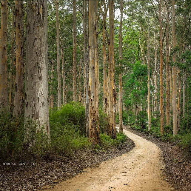 Something you need to do when visiting Australia's South West,…