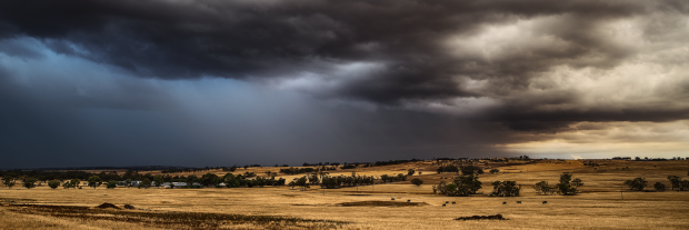 Wheatbelt Rainstorm